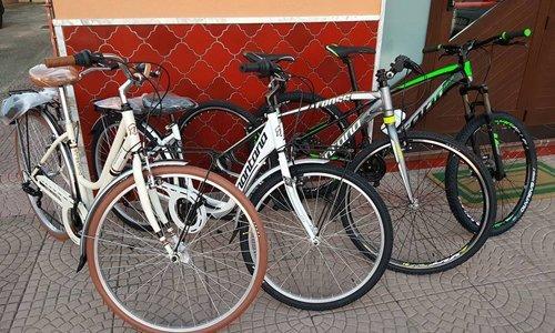 bici da città e mountain bike in esposizione