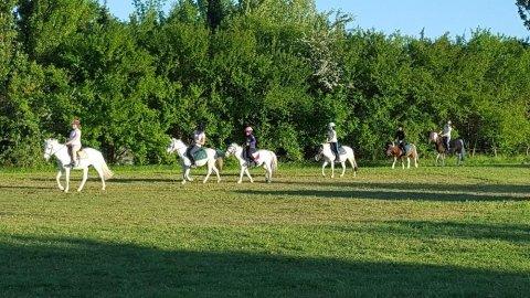 Centri estivi a cavallo