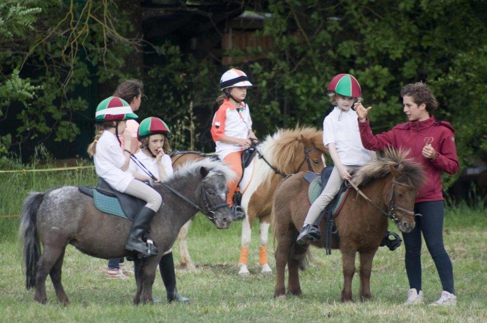 Giornata tutto pony