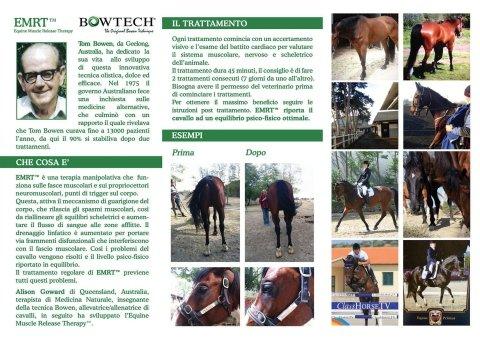 Terapia muscolare per cavalli