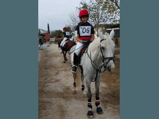 Prartecipazione a gara pony