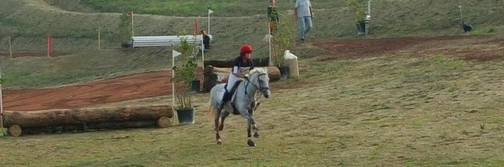 Centro ippico Toscana Equitazione Cerbaia
