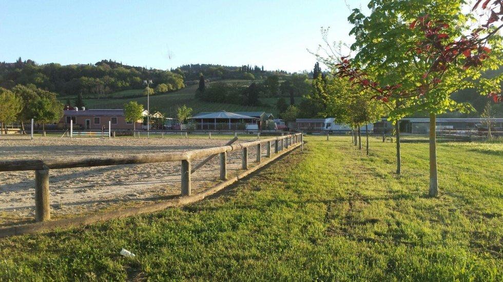 Centro ippico Toscana Equitazione