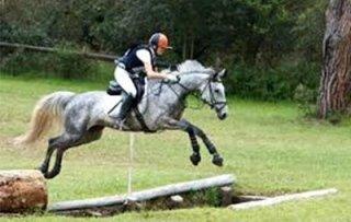 Concorso completo di equitazione
