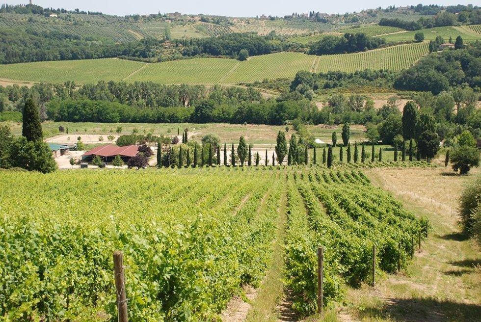 Ippoterapia Toscana Equitazione
