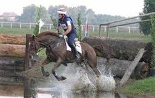 Scuola di concorso completo di equitazione