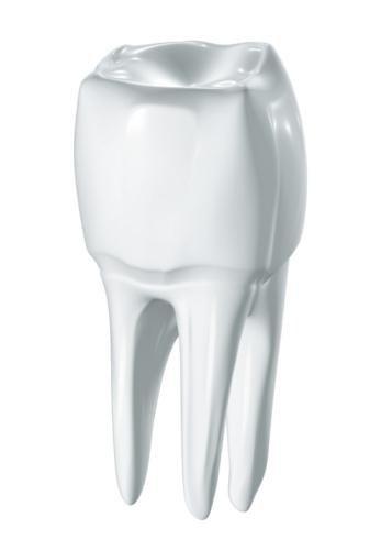 Sezione dente