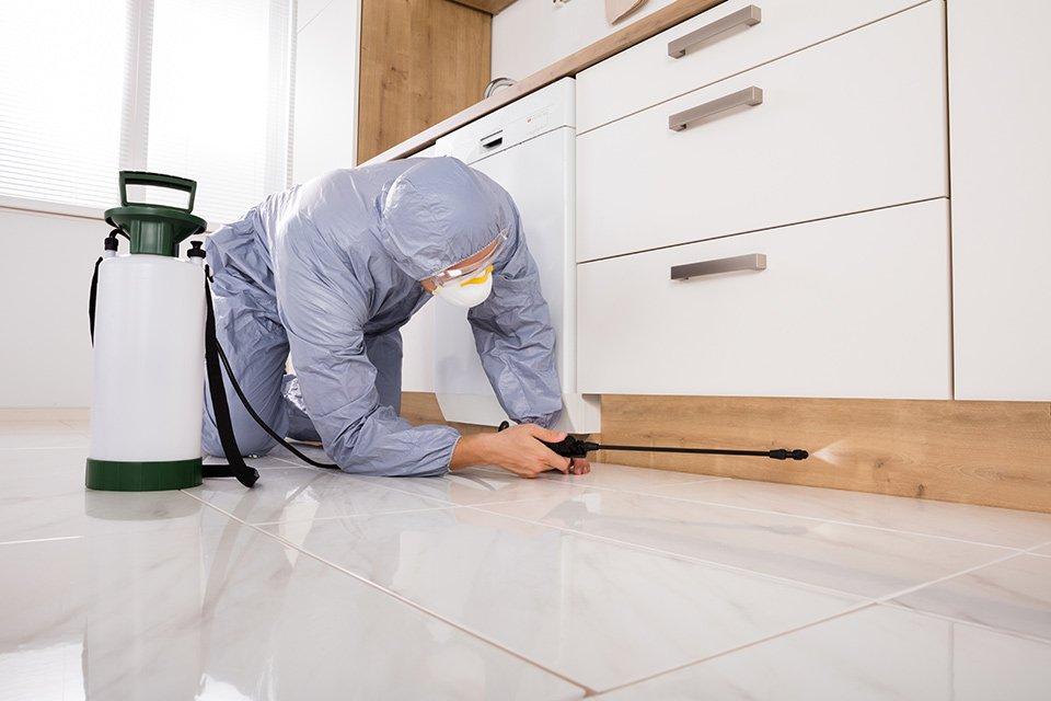 Uomo con un abito di sicurezza applicando il veleno in cucina