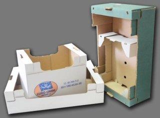 produzione cassette in cartone