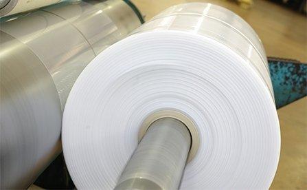 Sacchi materia plastica