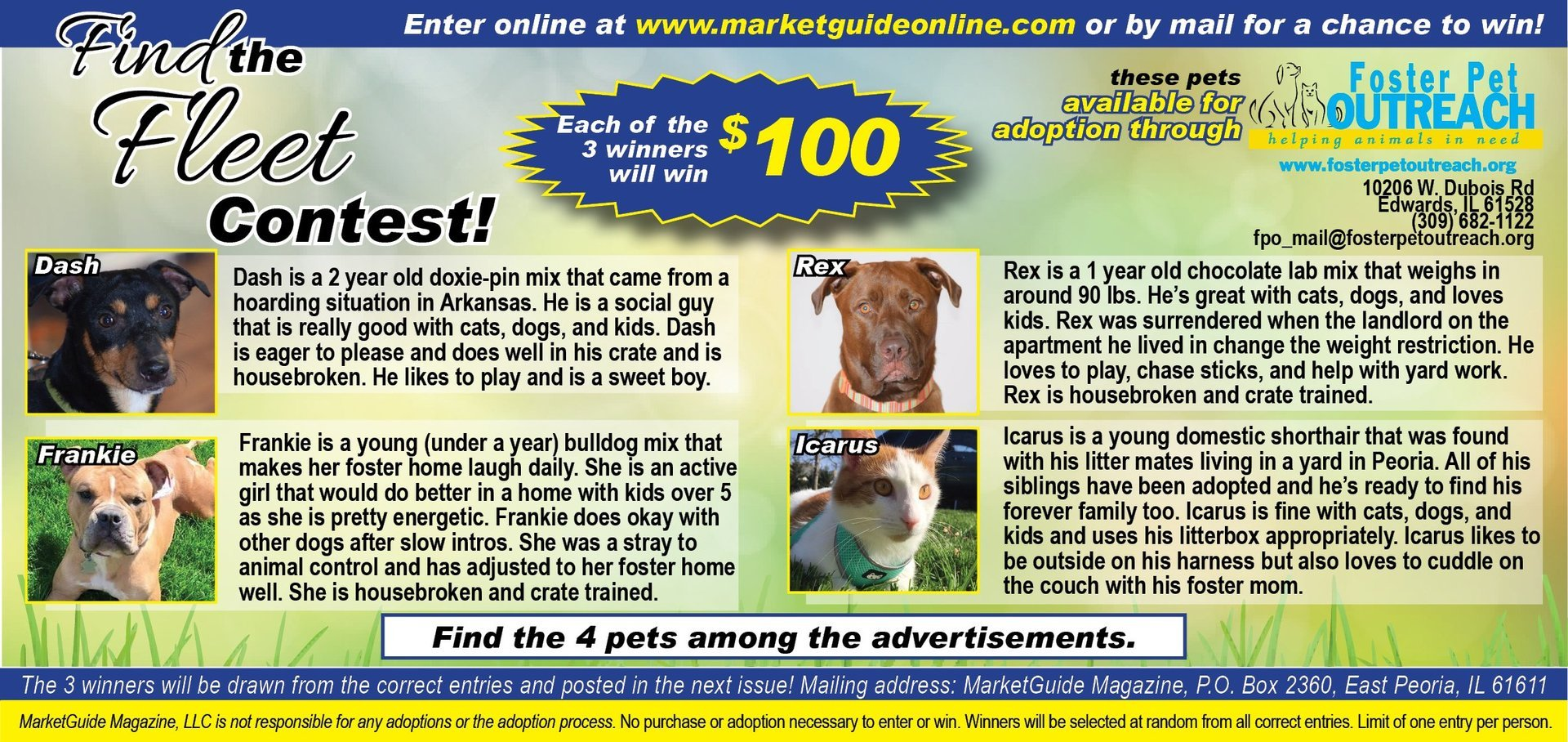 Find the Fleet Contest Foster Pet Outreach