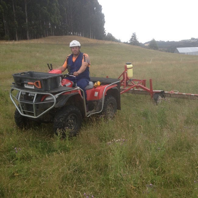 Agricultural weed control in Dunedin