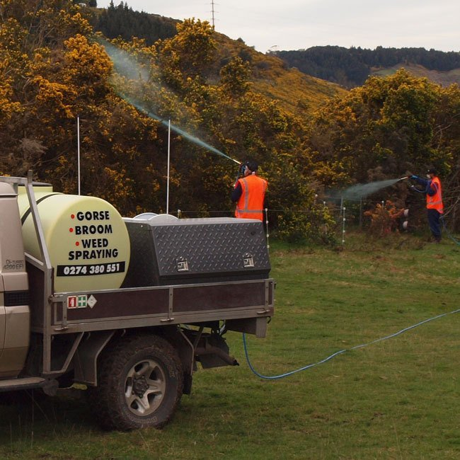 Gorse and broom spraying services in Dunedin