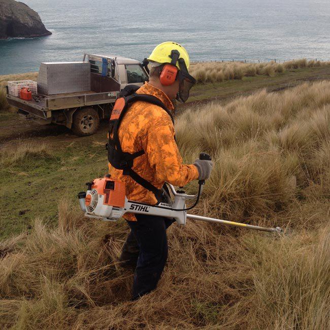 Propert maintenance services in Dunedin