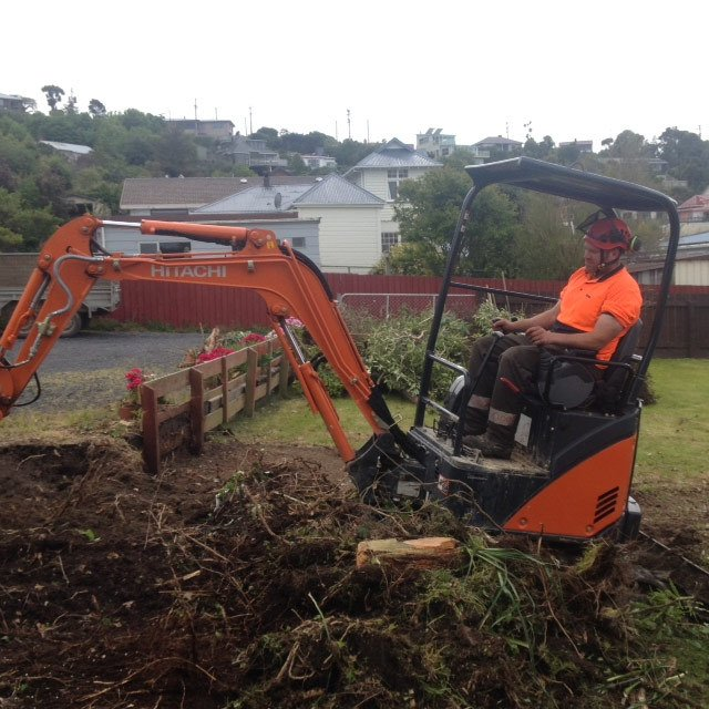 Section clearing in Dunedin
