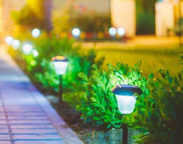 tiny solar lights in the garden