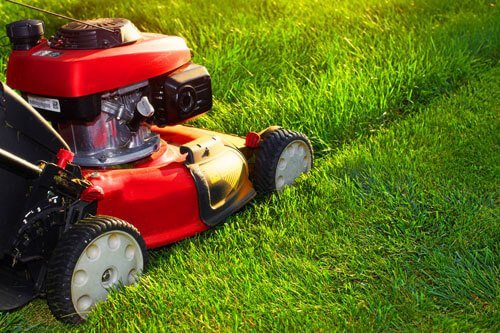 creating the perfect lawn with a red mower