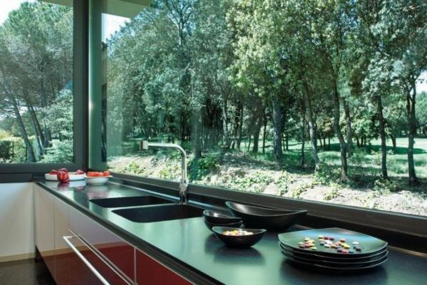 vetrate in una cucina  con vista su degli alberi