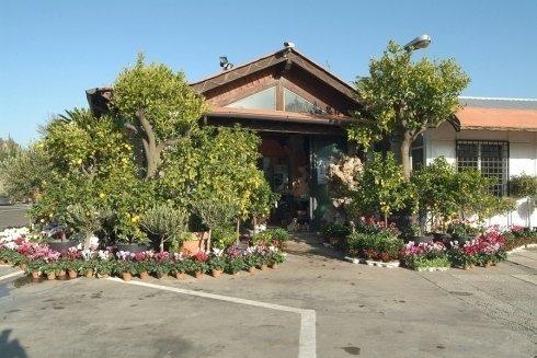 ingresso garden