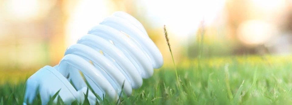 una lampada a risparmio energetico su un prato