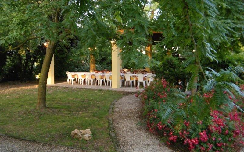 Roses in the park 2 - LA STALLA