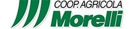 AGRICOLA MORELLI-logo