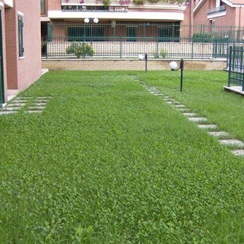 Appartamenti con giardino Roma Nord
