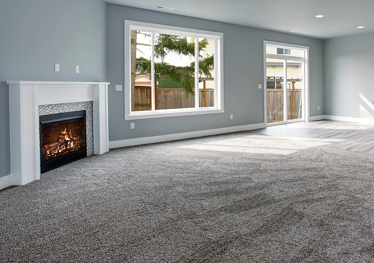 clean carpet in lounge room with fireplace