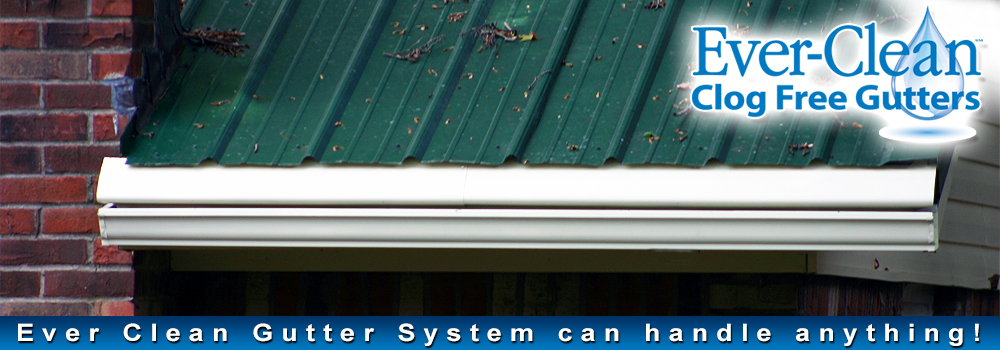 A roof with our clog-free gutters
