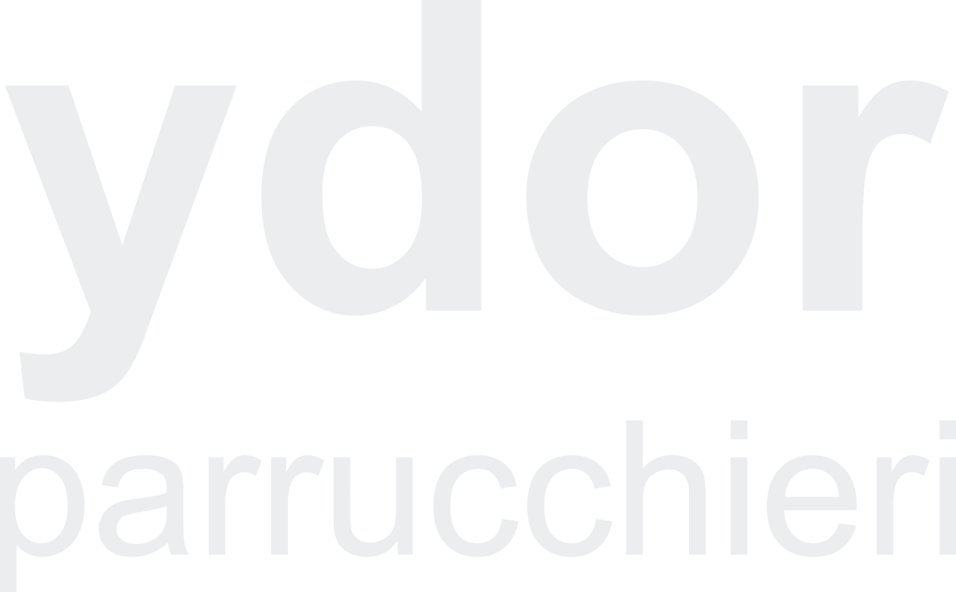 logo Ydor