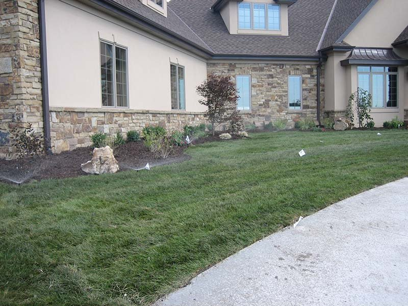 Residential sod service