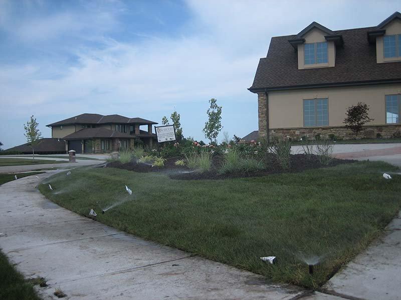 Residential grass lawn