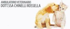 Rossella Chinelli - Il veterinario per i tuoi animali domestici