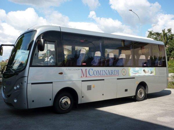 noleggio mini bus