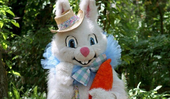 easter bunny costumes, costume rentals