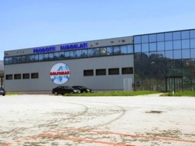 Vendita pesce surgelato La Spezia