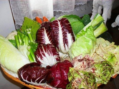 radicchio e caspi di insalata