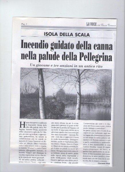 un articolo di giornale con scritto incendio guidato della canna nella palude della Pellegrina