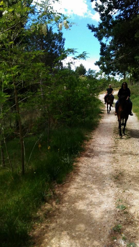 L'itinerario della passeggiata a cavallo nel bosco