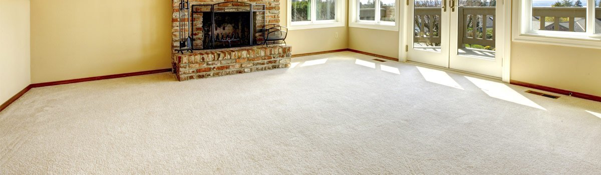 ezy clean services living room
