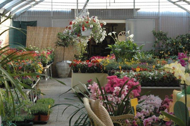 Vendiamo oggettistica e mobili per il tuo giardino a Spoleto