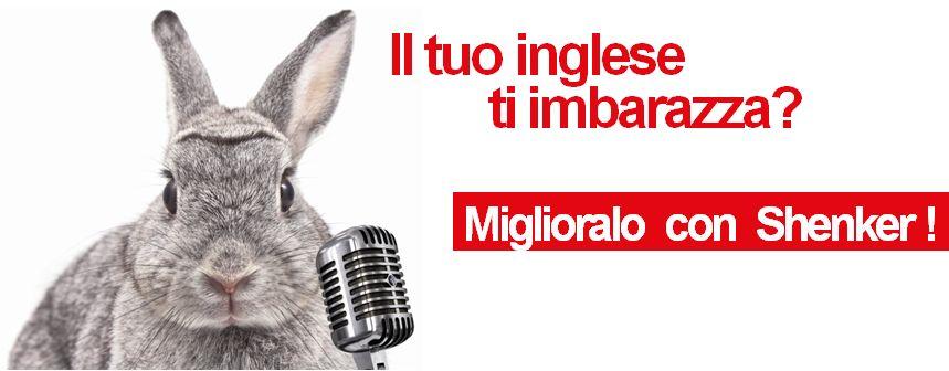 un coniglio davanti a un microfono e la scritta il tuo inglese t'imbarazza? Miglioralo con Shenker!