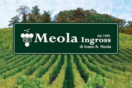 Prima pagina Catalogo Meola Ingross