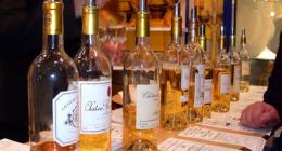 vasta scelta dei vini