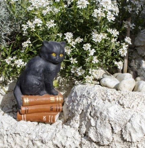 gatto fermalibri