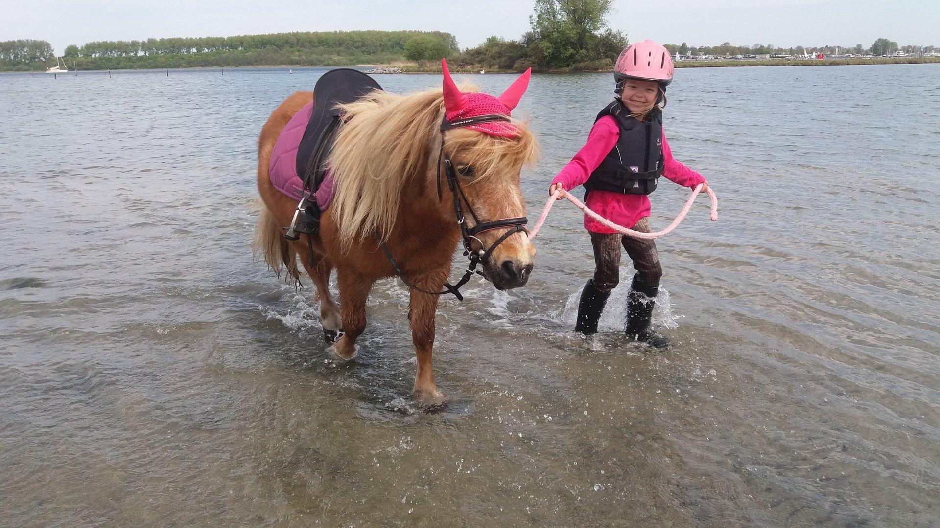 peuter en kleuter paardrijden