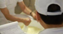 corso casearia formaggio veneto treviso formazione tecnologia casari