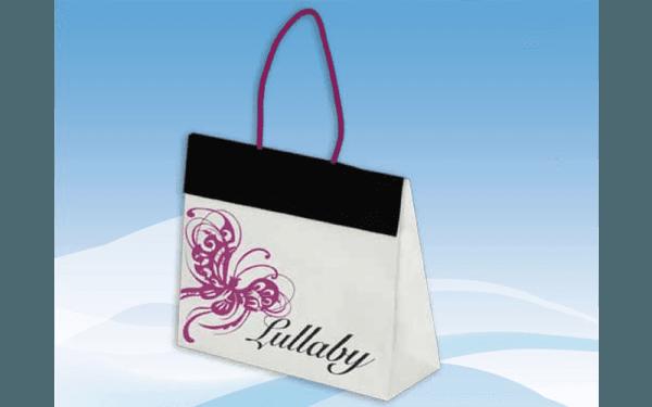 Shopping bag luxury