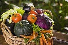Alimenti certificati biologici e biodinamici