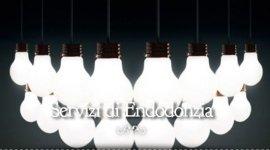 endodonzia, pedodonzia, assistenza dentistica